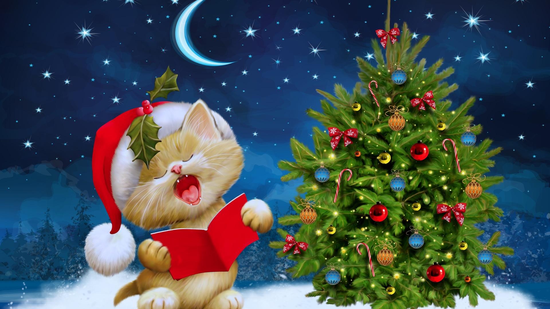 Merry Christmas Kitten Ultra HD Wallpaper